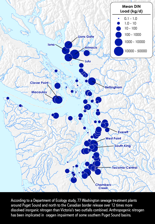 Dissolved Inorganic Nitrogen Sources in Puget Sound